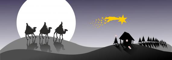 Głosuj na wielbłąda! – Orszak Trzech Króli