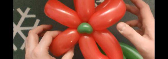 Balonowe cudeńka – Kreatywne ferie z TOK online